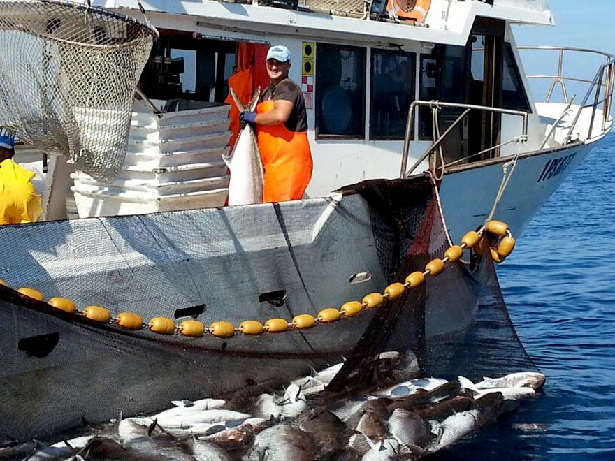 Hotel Ristorante Marinella - Imbarcazioni e mercato del pesce